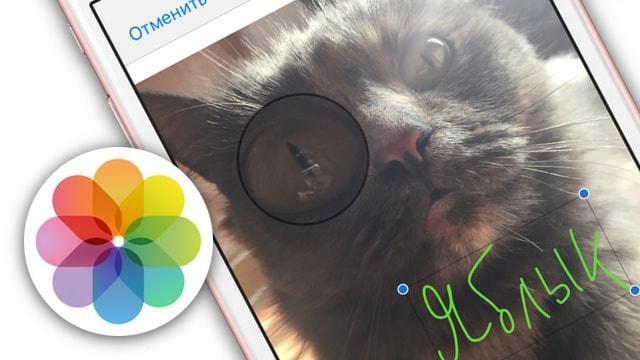 Как рисовать, добавлять текст и лупу на фото в iPhone и iPad без установки дополнительных приложений